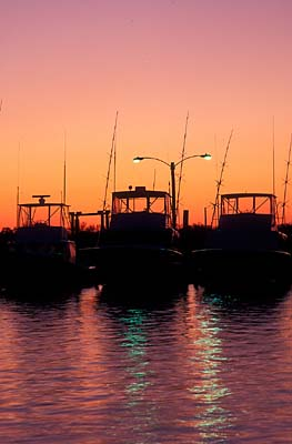 Harganonline images of the north carolina coast for Deep sea fishing outer banks nc